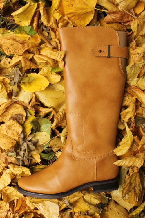 Wills boot in leaves
